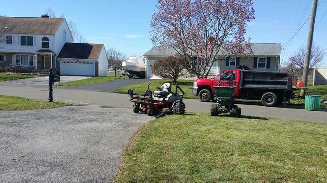 Mo & Sons Tree Care: Lawncare in Norwalk, Greenwich and Westport