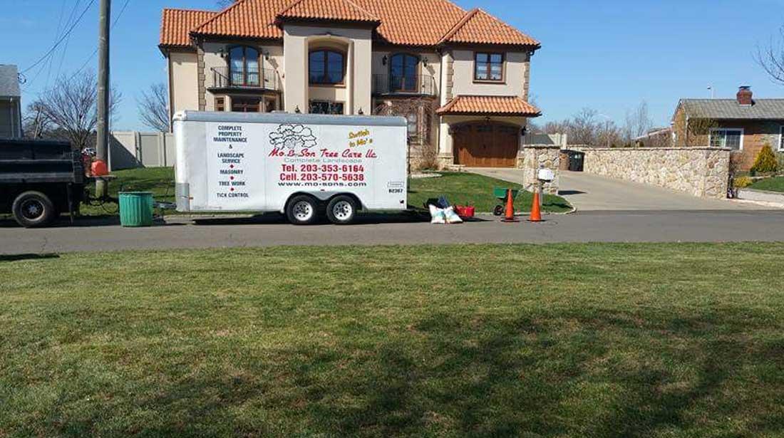 Mo & Sons Tree Care: Work van